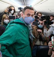 Arkivbild: Aleksej Navalnyj omgiven av journalister på planet från Berlin till Moskva tidigare i vinter Mstyslav Chernov / TT NYHETSBYRÅN