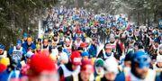 Skidåkare under Vasaloppet 2019. Ulf Palm / TT / TT NYHETSBYRÅN
