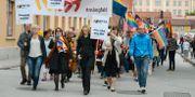RFSL:s mångfaldsparad i VIsby 2014. JANERIK HENRIKSSON / TT / TT NYHETSBYRÅN