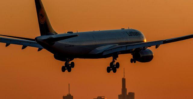 Ett flygplan landar i Frankfurt. Michael Probst / TT NYHETSBYRÅN