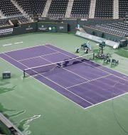 Centercourten i Indian Wells AL BELLO / TT NYHETSBYRÅN