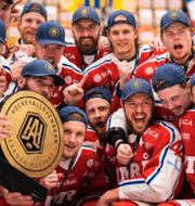 Arkivbild/Timrå IK under segerjublet igår. Bildbyrån/TT