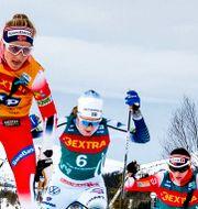 Ebba Andersson jagade Therese Johaug förgäves på torsdagen. Ulf Palm / TT / TT Nyhetsbyrån