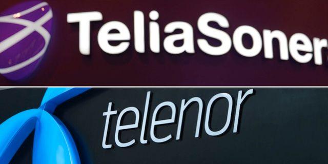 Telia sonera klarar sig sjalvt 3