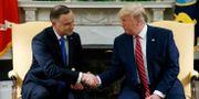 Andrzej Duda och Donald Trump. Evan Vucci / TT NYHETSBYRÅN