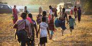 Människor i Rakhine flyr undan strider mellan rebeller och regeringsstyrkor - / AFP