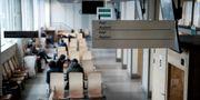 Väntsal för asylsökande på Migrationsverket i Solna, arkivbild. Marcus Ericsson/TT / TT NYHETSBYRÅN
