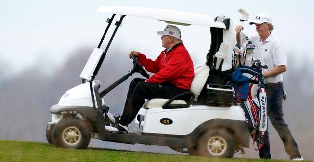 Trump golfade efter sitt G20-tal. Manuel Balce Ceneta / TT NYHETSBYRÅN