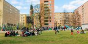 Arkivbild på människor i Tantolunden, Stockholm.  Emma-Sofia Olsson/SvD/TT / TT NYHETSBYRÅN