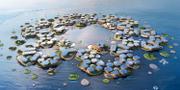 Oceanix City – den flytande staden med 10000 invånare OCEANIX/BIG-Bjarke Ingels Group