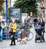 """""""Biblioteksstan"""" på Östermalm i Stockholm. Tomas Oneborg/SvD/TT / TT NYHETSBYRÅN"""