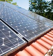 Solceller på ett villatak Fredrik Sandberg/TT / TT NYHETSBYRÅN