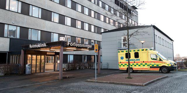 Sahlgrenska sjukhuset i Göteborg. Arkivbild. Thomas Johansson/TT / TT NYHETSBYRÅN