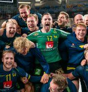 Svenska laget efter segern mot Frankrike. MATHIAS BERGELD / BILDBYRÅN