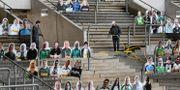 Läktare med porträtt på tyska fotbollsfans.  Martin Meissner / TT NYHETSBYRÅN