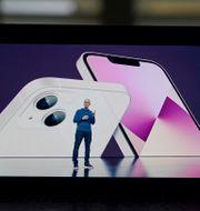 Arkivbild. Apples vd Tim Cook presenterade bland annat Iphone 13 under årets septemberevent.  Jae C. Hong / TT NYHETSBYRÅN