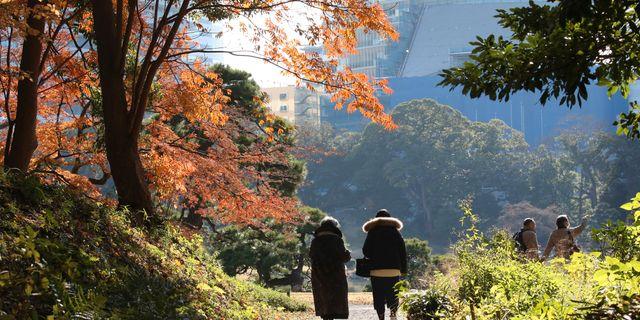Arkivbild: Hamarikyu Gardens i Tokyo.  Koji Sasahara / TT NYHETSBYRÅN