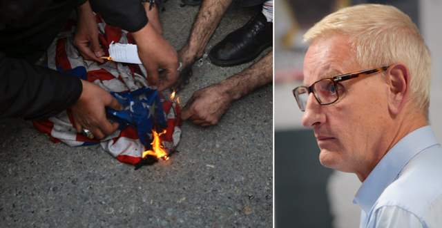 Protester i Iran, Carl Bildt TT