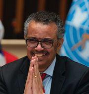 Donald Trump. WHO:s generalsekreterare Tedros Adhanom. TT