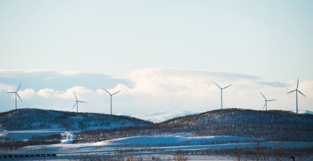 En vindkraftspark utanför Kiruna. Fredrik Sandberg/TT / TT NYHETSBYRÅN