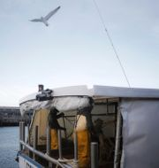 Arkivbild. Fiskare i Frankrike.  Thibault Camus / TT NYHETSBYRÅN