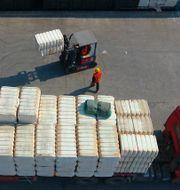 Bomull från Xinjiang lastas på en lastbil.  TT NYHETSBYRÅN