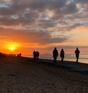 Människor på stranden i belgiska Adinkerke Virginia Mayo / TT NYHETSBYRÅN