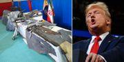 Bilder släppta av Iran på den nedskjutna drönaren / Donald Trump.  TT