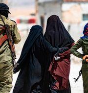 Arkivbild från al-Hol i Syrien. DELIL SOULEIMAN / AFP