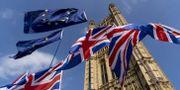 Flaggor utanför brittiska parlamentet.  NIKLAS HALLE'N / AFP