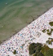 Översiktsbild från Lomma Beach i Skåne. Johan Nilsson/TT / TT NYHETSBYRÅN