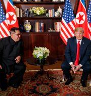 Arkivbild: Kim Jong-Un och Donald Trump. Evan Vucci / TT NYHETSBYRÅN/ NTB Scanpix
