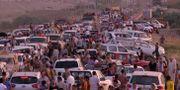 Människor flyr till Erbil i Irak i augusti 2014.  TT NYHETSBYRÅN