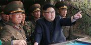 Nordkoreas diktatur Kim Jong-Un.  STR / KCNA VIA KNS