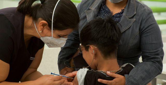 En pojke i Mexiko får Pfizers vaccin mot covid-19. Isabel Mateos / TT NYHETSBYRÅN