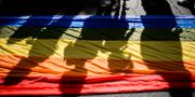 Illustrationsbild. Pride i Bukarest, Rumänien, 2015. Andreea Alexandru / TT / NTB Scanpix