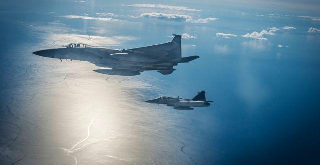 Ett amerikanskt F15-plan och ett svenskt JAS Gripen-plan Yvonne Åsell / SvD / TT / TT NYHETSBYRÅN