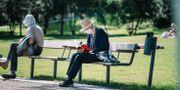 En kvinna med munskydd läser en bok i Vasaparken i Stockholm. Stina Stjernkvist/TT / TT NYHETSBYRÅN