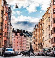 Illustrationsbild från centrala Stockholm. Tomas Oneborg/SvD/TT / TT NYHETSBYRÅN