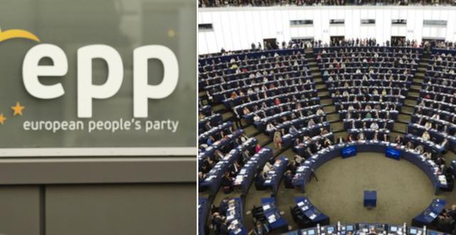 EPP är en av de partigrupper som väntas backa enligt opinionsmätningarna.  TT