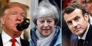 Trump/May/Macron.  TT