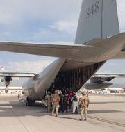 Svenska försvarmaktens Hercules 848 evakuerar människor på Kabuls flygplats. Försvarsmakten / TT NYHETSBYRÅN