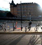 Elsparkcyklar i Stockholm Janerik Henriksson/TT / TT NYHETSBYRÅN