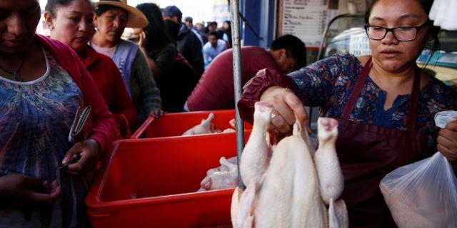 Bolivianer köar för att få köpa kyckling. TT