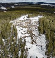 Vindkraftprojektet i Viksjö. SVT