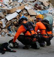 Räddningsarbetarna med hunden som upptäckte sökplatsen. Bilal Hussein / TT NYHETSBYRÅN