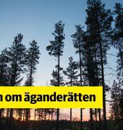 Henrik Montgomery/TT/TT NYHETSBYRÅN