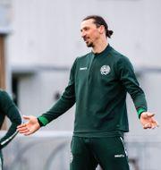 Zlatan Ibrahimovic deltog i matchen. MAXIM THORE / BILDBYRÅN