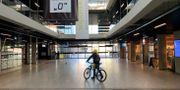 En cyklist i en övergiven tågstation i staden Sopot i Polen. RADU SIGHETI / TT NYHETSBYRÅN