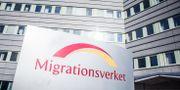 Migrationsverket. Arkivbild. Adam Wrafter/SvD/TT / TT NYHETSBYRÅN